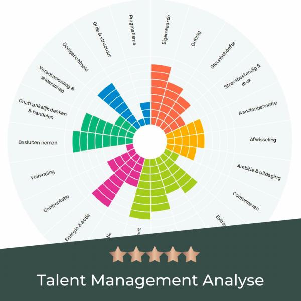 TMA Talent Management Analyse